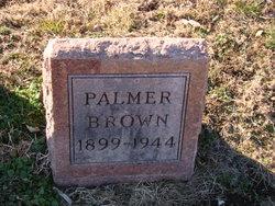 Palmer Brown