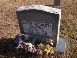 Ausie <i>Scarlett</i> Brown