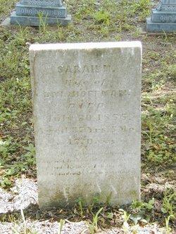 Sarah M Hoffman