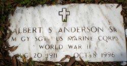 Albert Sidney Anderson, Sr