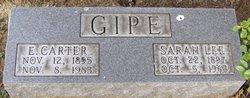 Sarah Lee <i>Coons</i> Gipe