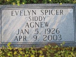 Evelyn Siddy <i>Spicer</i> Agnew