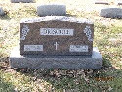 June A. <i>Manning</i> Driscoll