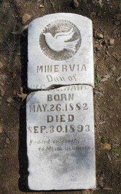 Minerva Ward