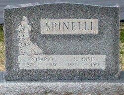 Rose <i>Trunzo</i> Spinelli
