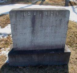 Alanson B Tedford