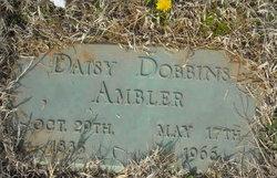 Daisy <i>Dobbins</i> Ambler
