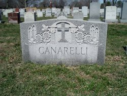 Rosa Rose <i>Maroldo</i> Canarelli