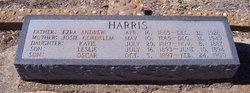 Leslie Harris