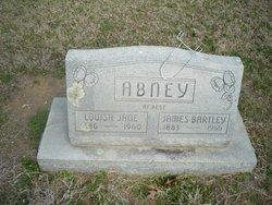 Louisa Jane <i>McGee</i> Abney