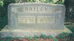 Harvey Peery Bailey