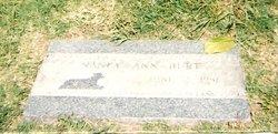 Nancy Ann Burt
