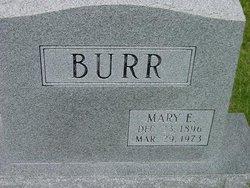 Mary Eleanor <i>Robertson</i> Burr