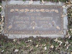 Floyd Delford Brandt