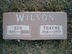 Thayne Wilson