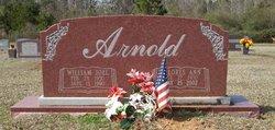 Delores Ann Arnold