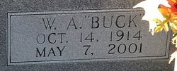 W. A. Buck Blizzard