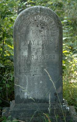Andrew Jackson Berry