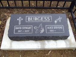 Alice Stevens Burgess