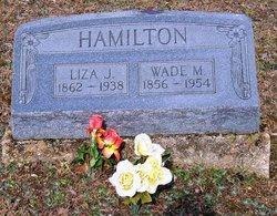 Eliza Jane <i>Cole</i> Hamilton