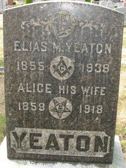 Alice Yeaton