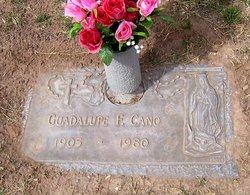 Guadalupe <i>Figueroa</i> Cano