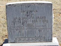 Johnny Adams, Jr