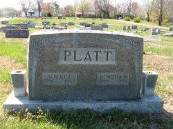 Albert L. Platt