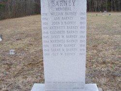 Ann <i>Hagaman</i> Barney