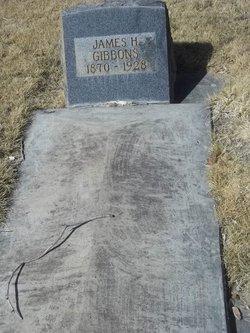 James H Gibbons