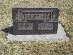 Effie <i>Rogers</i> Gibbons