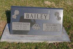 Kathryn Elaine <i>Sater</i> Bailey