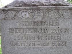 William Miller Coker