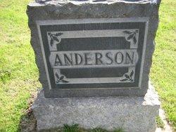 David McKay Anderson