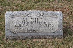 Amelia C <i>Bare</i> Auchey