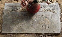 Andrew Jackson Wyatt
