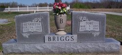 Henrietta Briggs