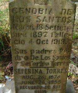 Zerafina Torres