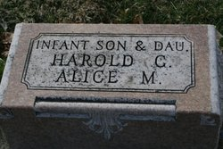 Alice M Anderson