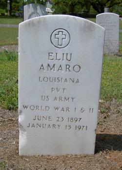 Eliu Amaro