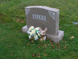 Alice Janett Alley