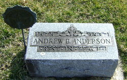 Andrew B Anderson