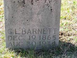 G. L. Barnett