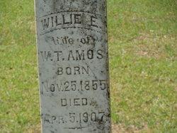 Willie Elizabeth <i>Robinson</i> Amos