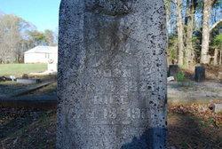 William Marion Ash, III