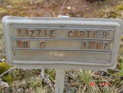 Lizzie Carter