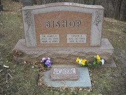 Dr James F Bishop