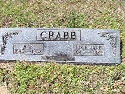 Eliza Jane Lizie <i>King</i> Crabb
