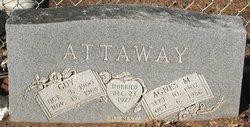 Agnes M Attaway