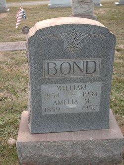 Amelia M Bond